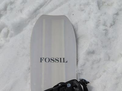 1FOSSIL ALL MOUNTAUN Ⅱ