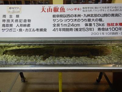 12黒姫物産センター