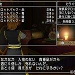 ドラクエ10 占い師クエスト「ようこそビギナー!」No.438