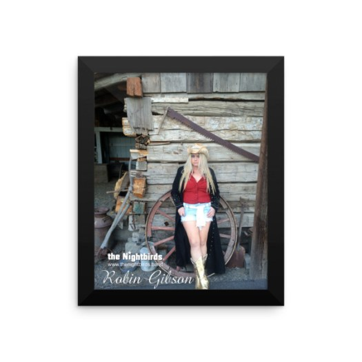 the Nightbirds Country Collection Robin Gibson Framed photo paper poster 00023
