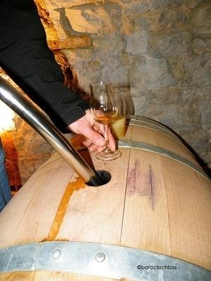 Certificate in Wine Essentials, Business & Marketing