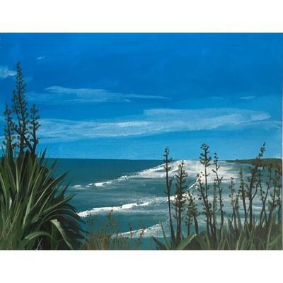 John Cannon -- New Zealand beaches