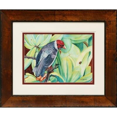 Sandi McGuire -- Hawaiian Cardinal