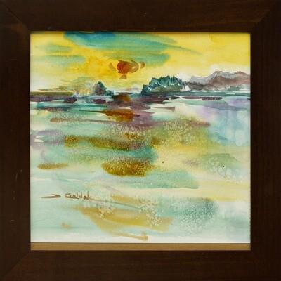 Forrest Goldade -- Beach Reflections