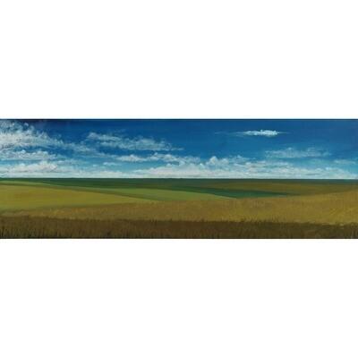 John Cannon -- Tall Grass prairie