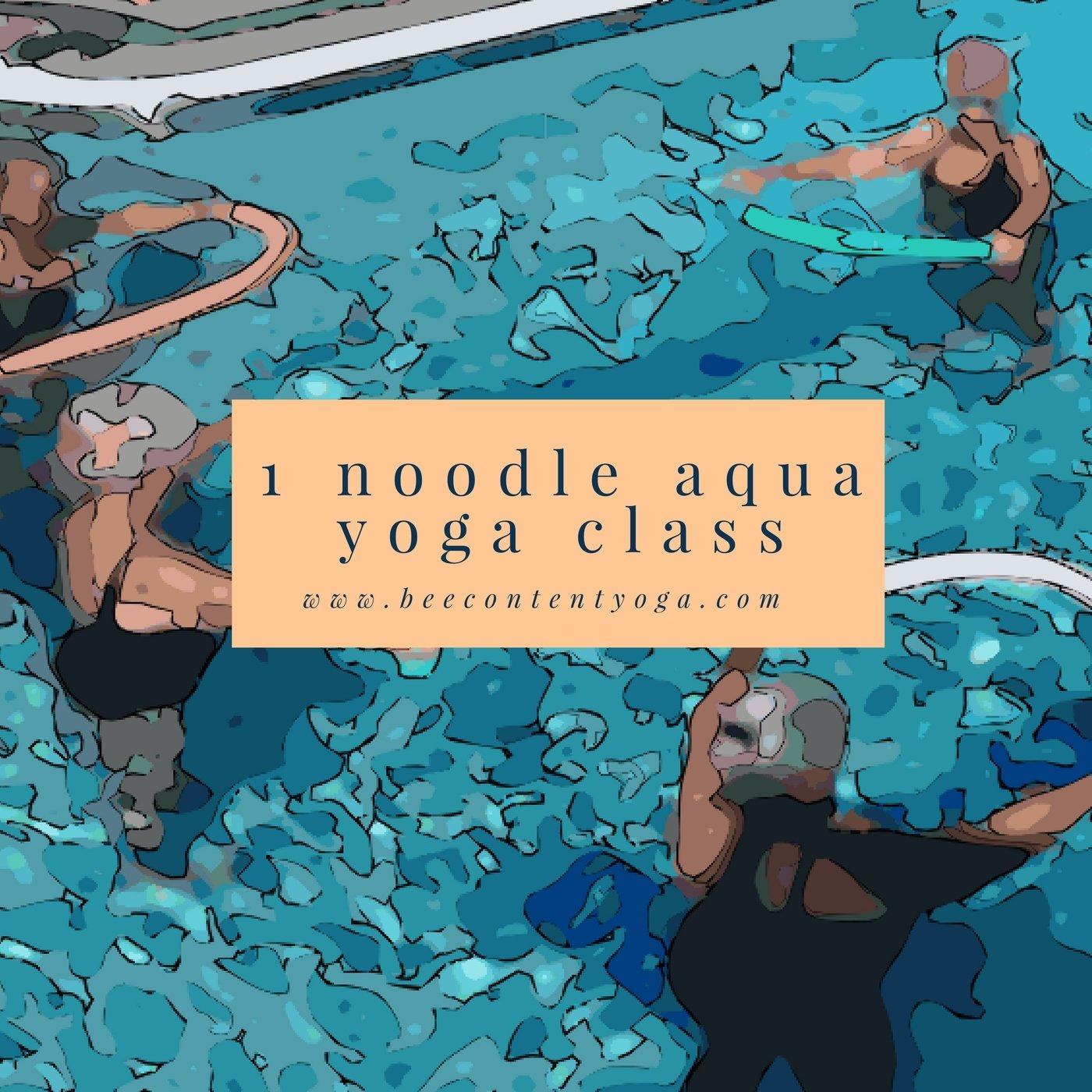 One Noodle Aqua Yoga Class Recording 00009
