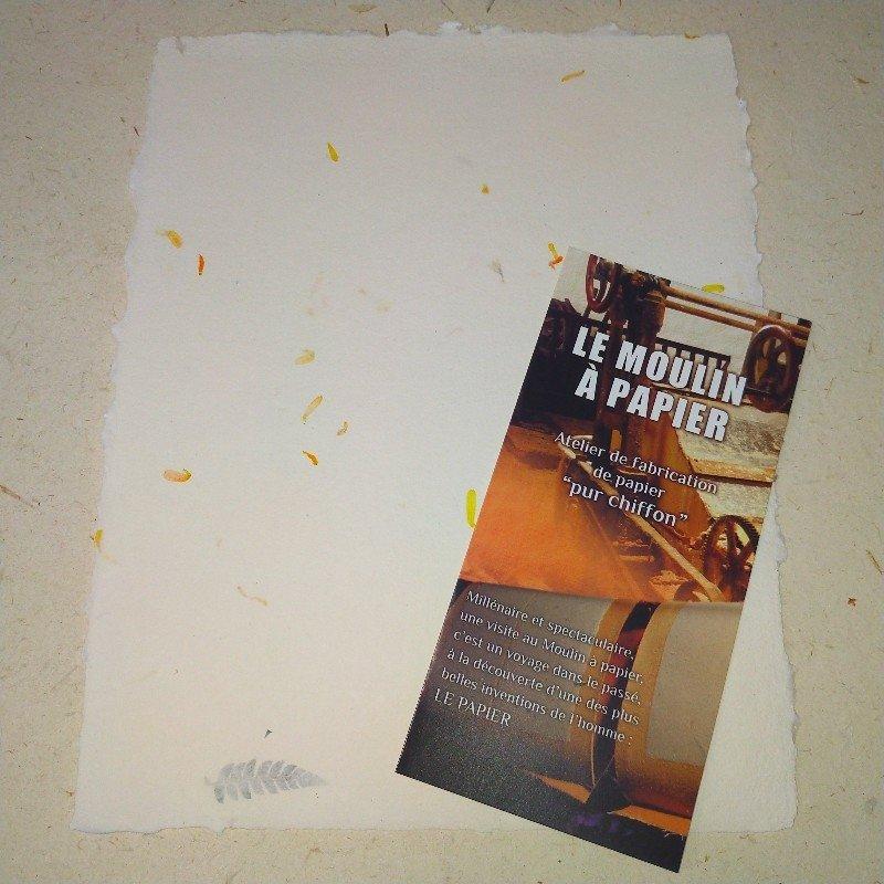 Feuille de Papier inclusion Pétales de fleurs 00050