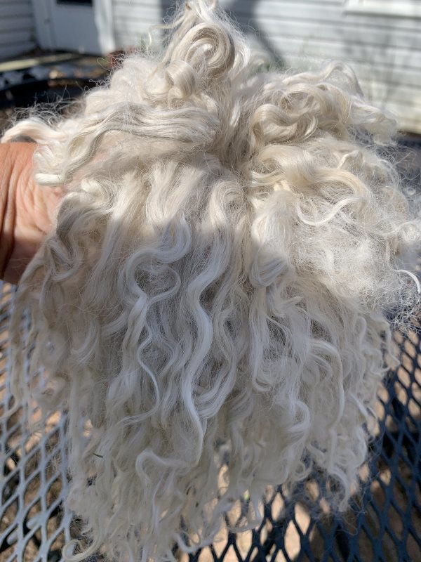 Suri Alpaca Locks, 9 Inches, White, Sonya