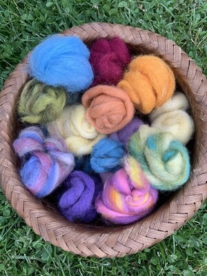 Alpaca Wool Roving Sampler - Spring Colors