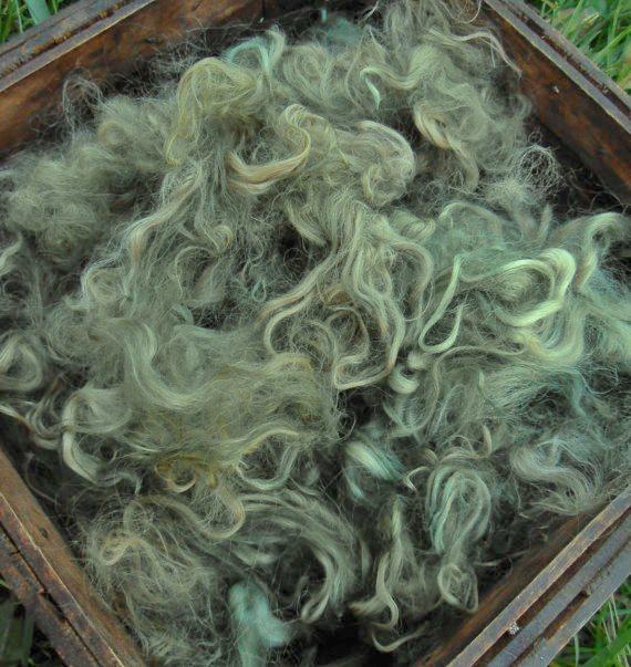 Hand-Dyed Suri Alpaca Fiber, 4 Inches, Olive 17776