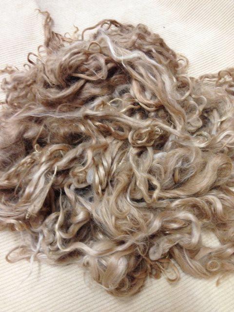 Suri Alpaca Fiber, 5 Inches, Beige, Medium Fawn, Brylee 17848