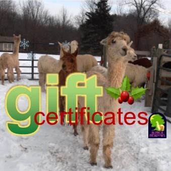 Gift Certificates AMDWS-051101