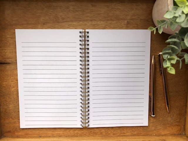 Let That Shit Go Writing Journal