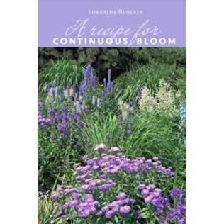 A Recipe for Continuous Bloom 00001