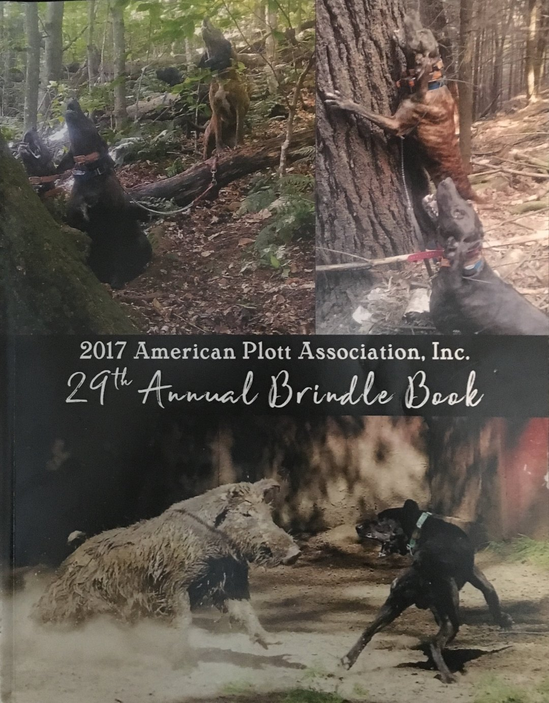 2017 APA Brindle Book 00001