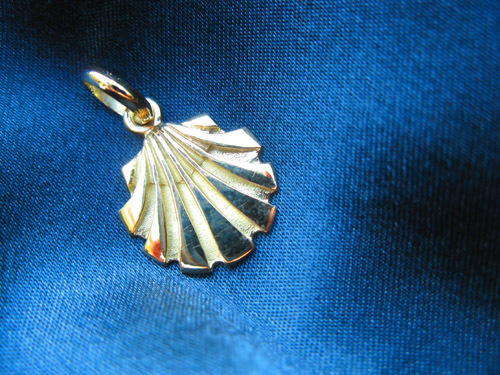 Close-up of the gold scallop shell (concha de vieira in Spanish)