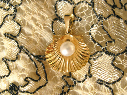 Medium size scallop necklace - shell measures 17mm wide x 23mm long including the hanging bail