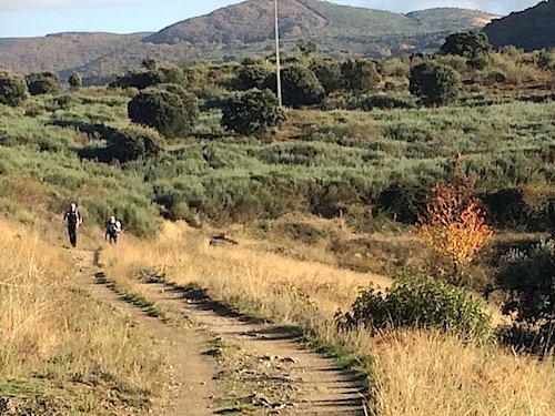 Walking the Camino in Spain