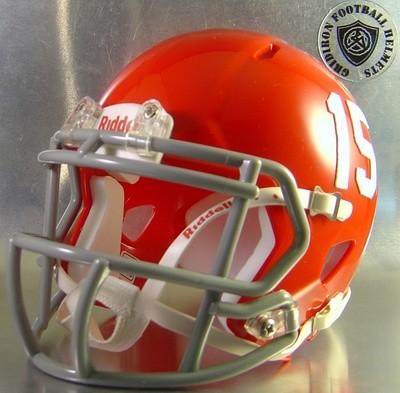 Alief-Taylor Lions HS 2013-2015 (TX) (mini-helmet)