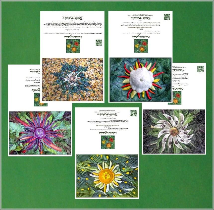 Celestial Vegetable Greeting Cards Set # 1 SM0000CARDS1