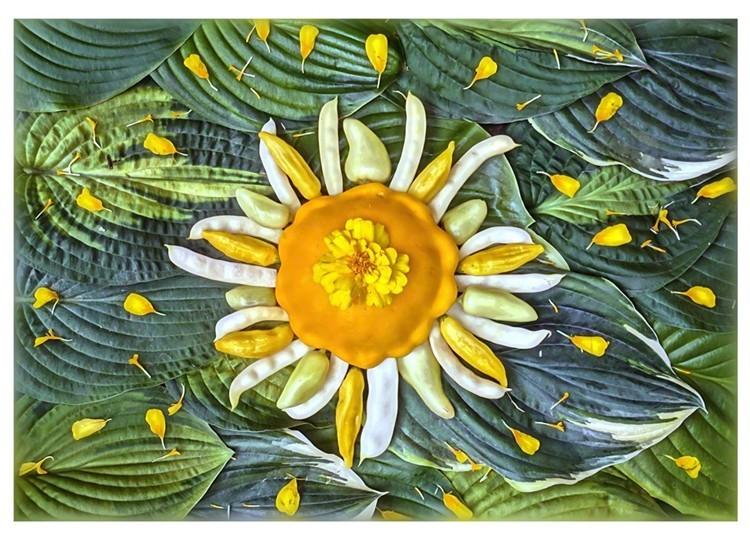 Celestial Vegetable Greeting Cards Set # 1