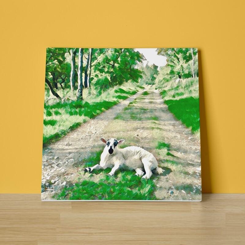Lamb Lane Canvas Print