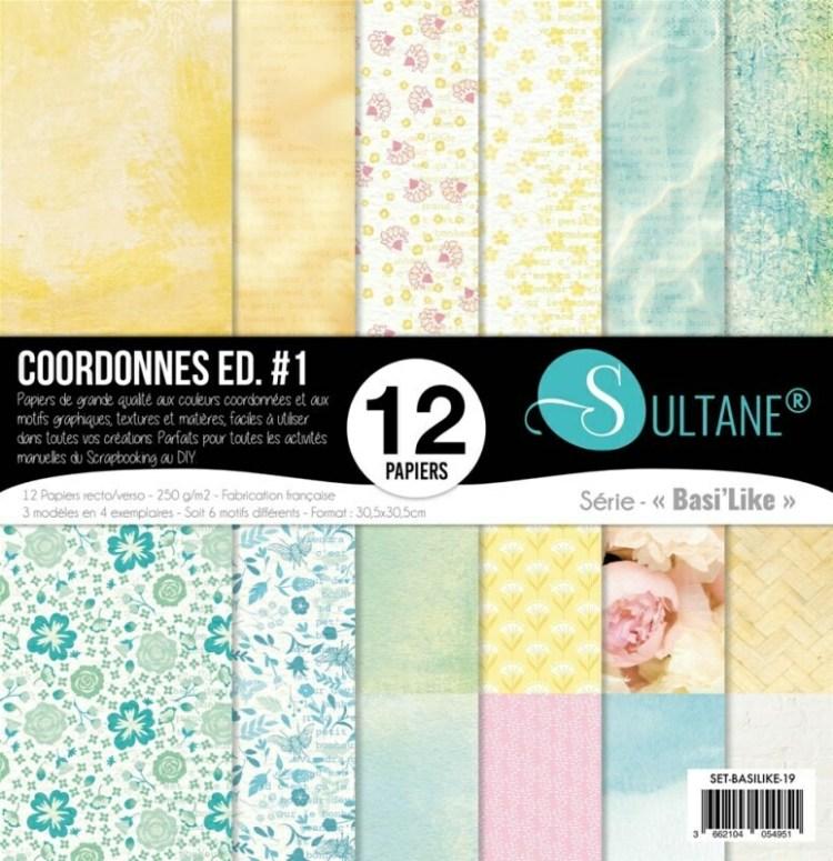 Set de 12 papiers Sultane recto/verso 30,5x30,5 cm - 250 g/m2 - Coordonné printemps