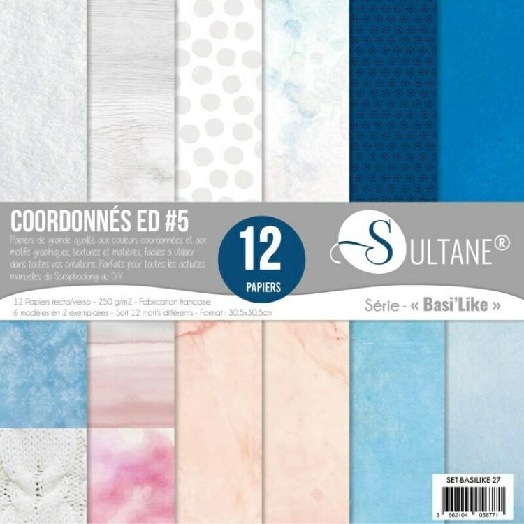 Set de 12 papiers Sultane recto/verso 30,5x30,5 cm - 250 g/m2 - Coordonnés Petits Plaisirs d'Hiver