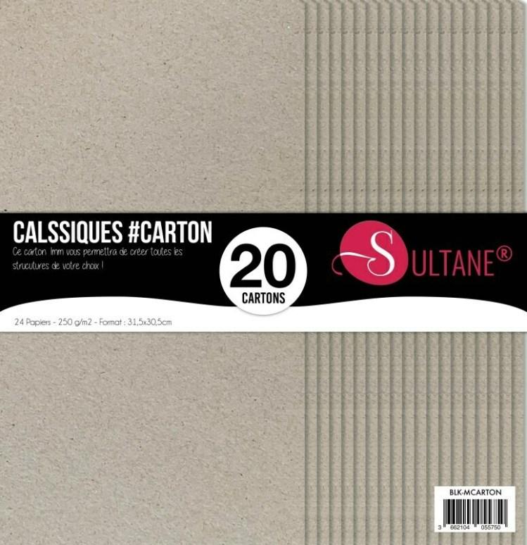 Set 20 cartons de 1mm - Spécial structure - Brut
