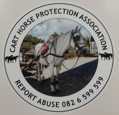 Licence Disc Stickers 0002