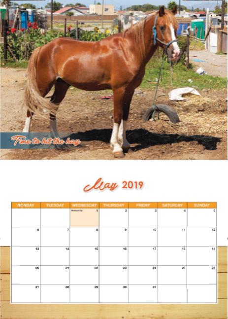 2019 Cart Horse Calendar