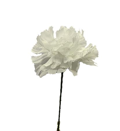 S3000WHT - Carnation Pick $16.95 ( Box 100) S3000WHT
