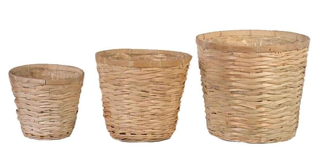 "MS1118WW -  10 -"" WW Bamboo ( fit 8"" pot) $3.50 each 