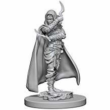Pathfinder Deep Cuts Unpainted Miniatures: Human Female Rogue