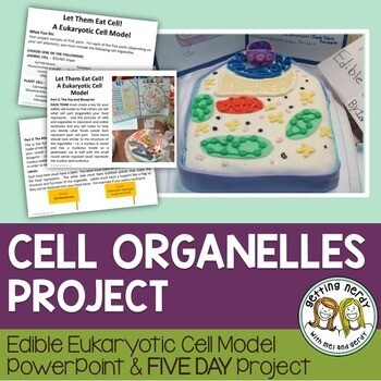Cell Structure & Function - Cell Model Project