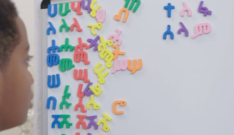 Amharic Magnetic Letters | All 231 alphabets | Geez | Tigrigna