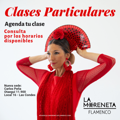 Clases particulares (1 hora)