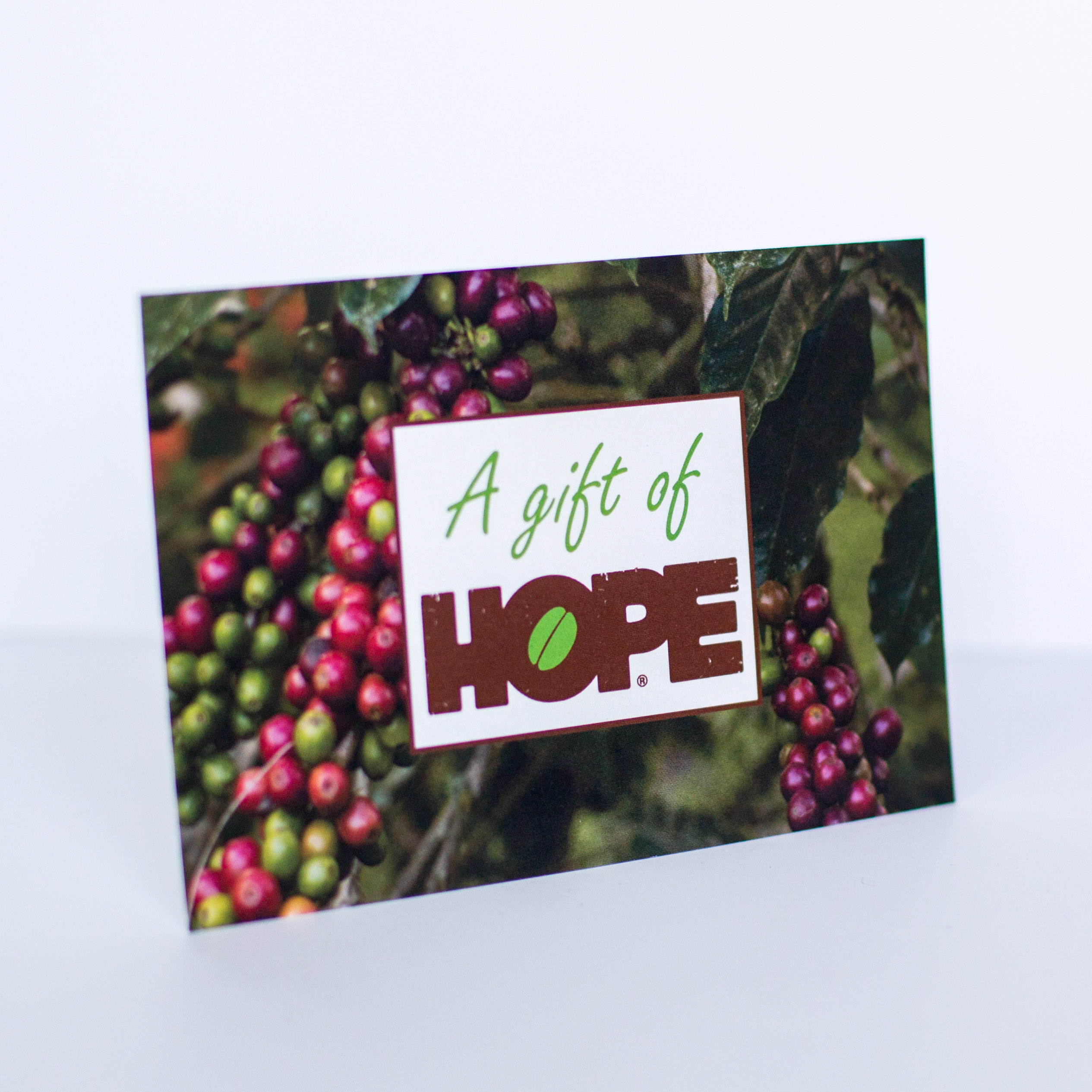 Let us know how to personalize this beautiful Christmas card for your loved one!
