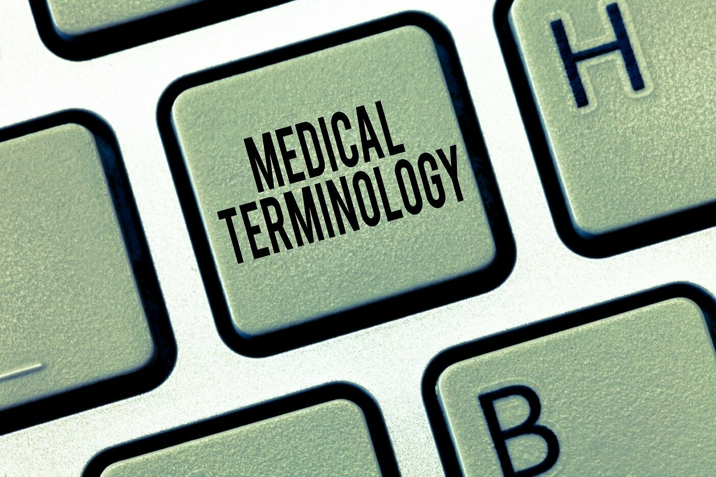 Bsmsa Medical Terminology For Beginners