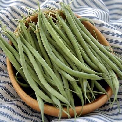Seed Packet- Fin de Bagnol Bean