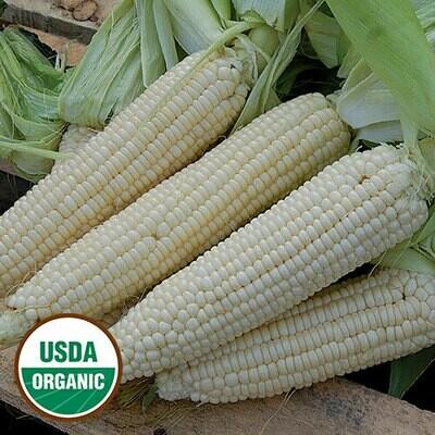 Seed Packet-Stowell's Evergreen Organic Sweet Corn