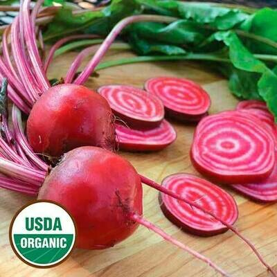 Seed Packet-Chioggia Beets