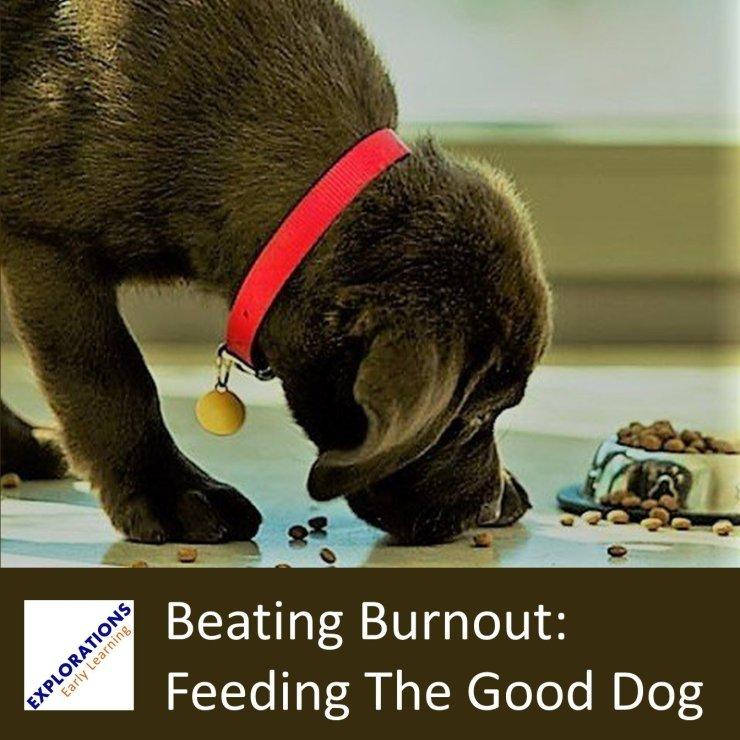 Beating Burnout: Feeding The Good Dog