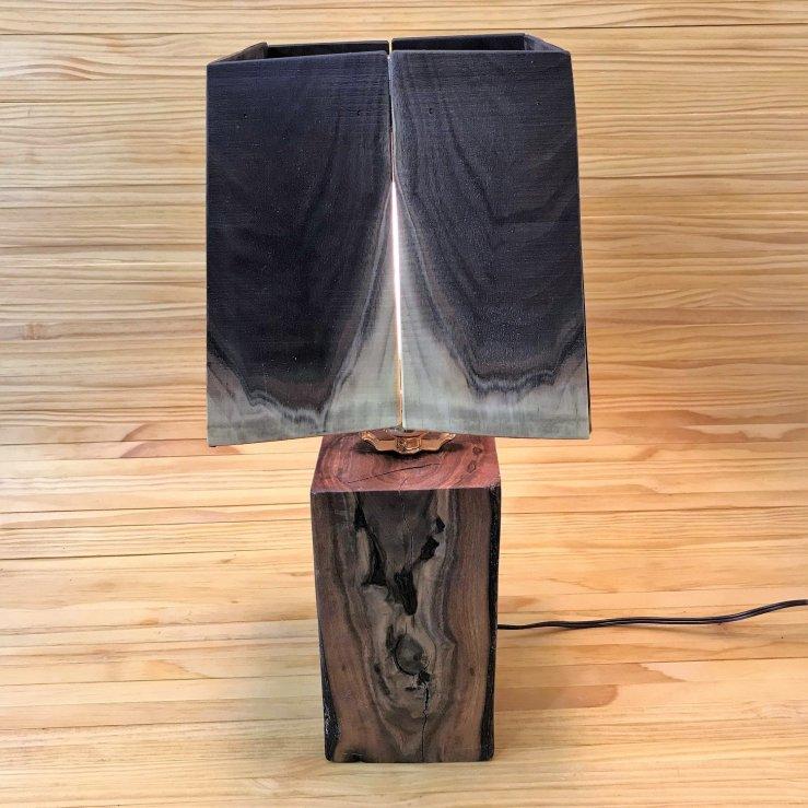 Reading Lamp 0001