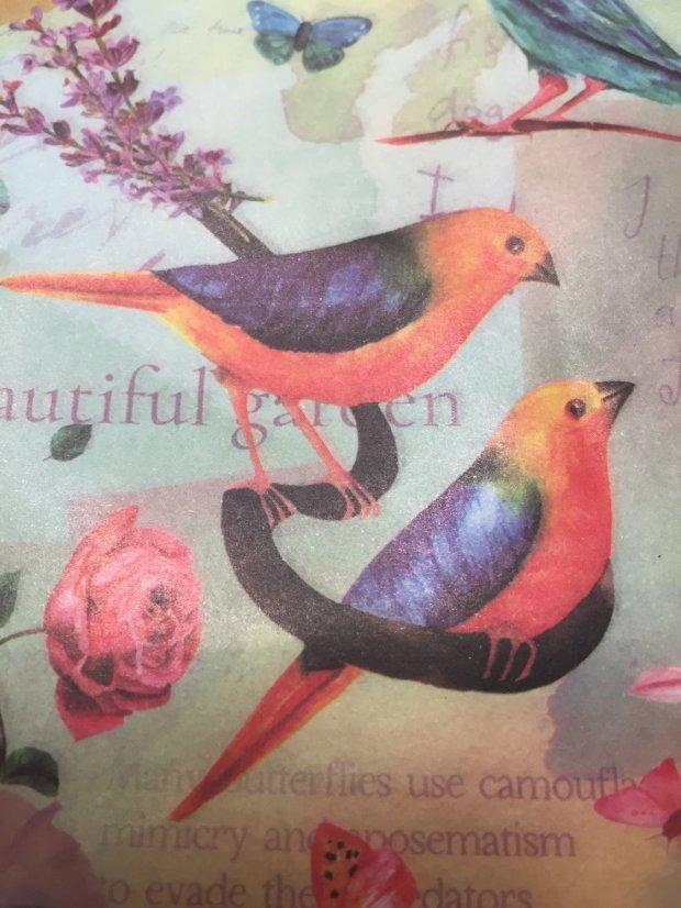 Decoupage Paper: A Little Birdy