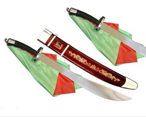 Sables Dobles de Wushu con funda flexibles