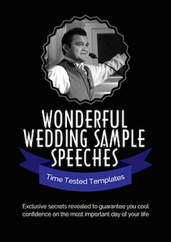 eBook PDF WONDERFUL WEDDING SAMPLE SPEECHES