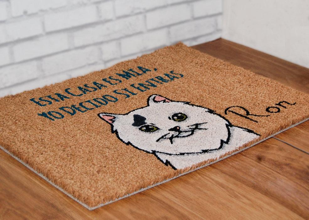 Gato Angora turco