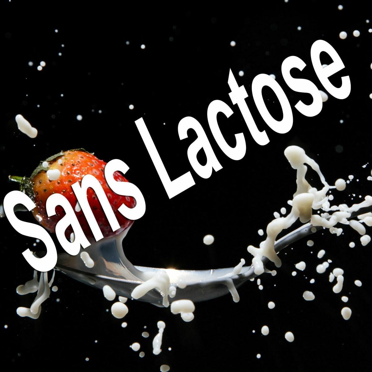 6Kg PL75 Protéine Lait Native Bio Sans Lactose (origine: France)