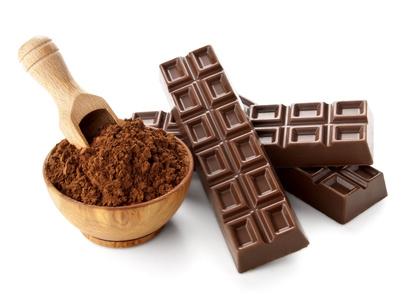Bio: Cacao maigre et protéiné en 4 kg 00318